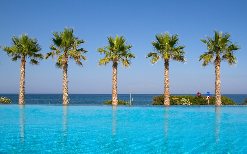 pool with palm trees in the distnace